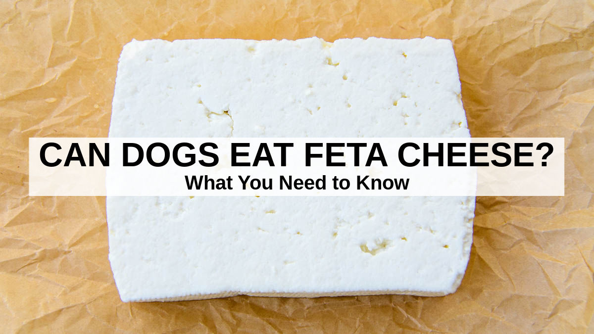 block of feta cheese on parchment paper