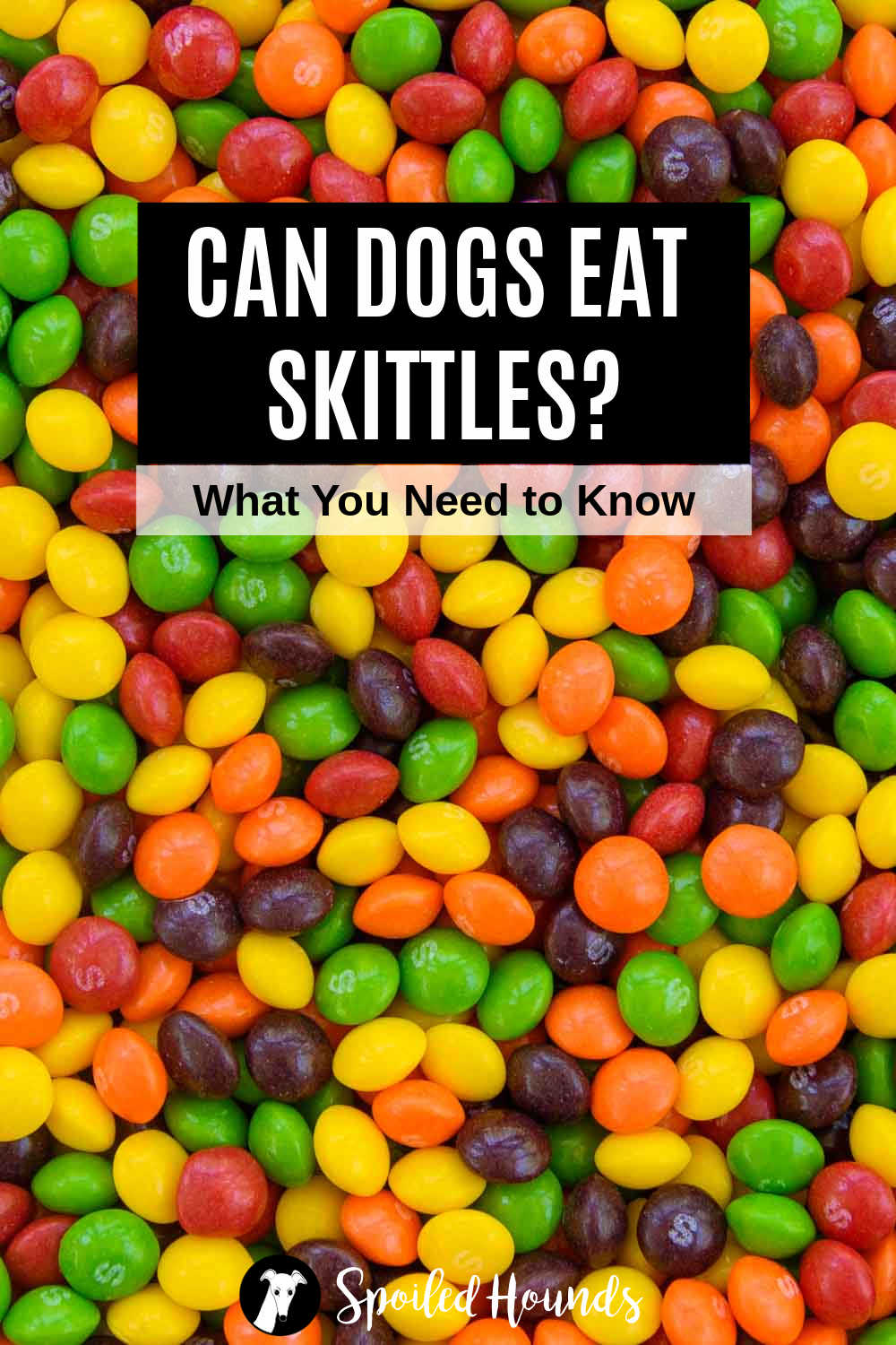 a bunch of Skittles candy