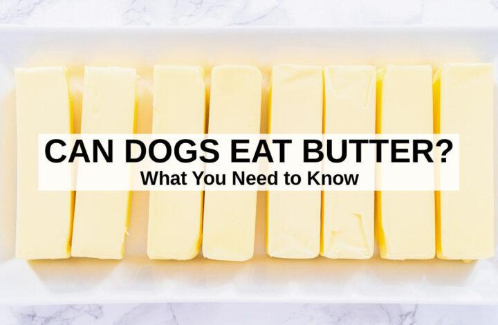 sticks of butter on a platter
