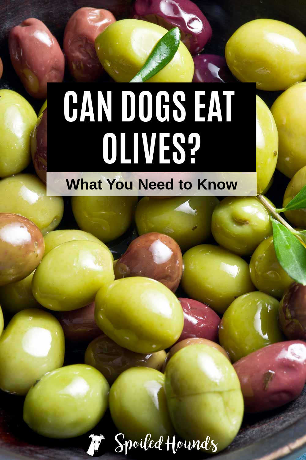 a bunch of olives in a bowl