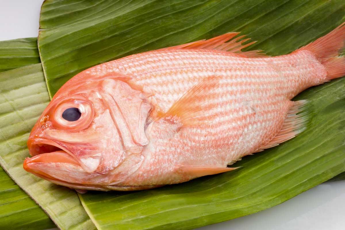 orange roughy fish on banana leaves