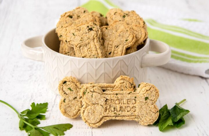 homemade dog treats for bad breath in a bowl and two in front of the bowl