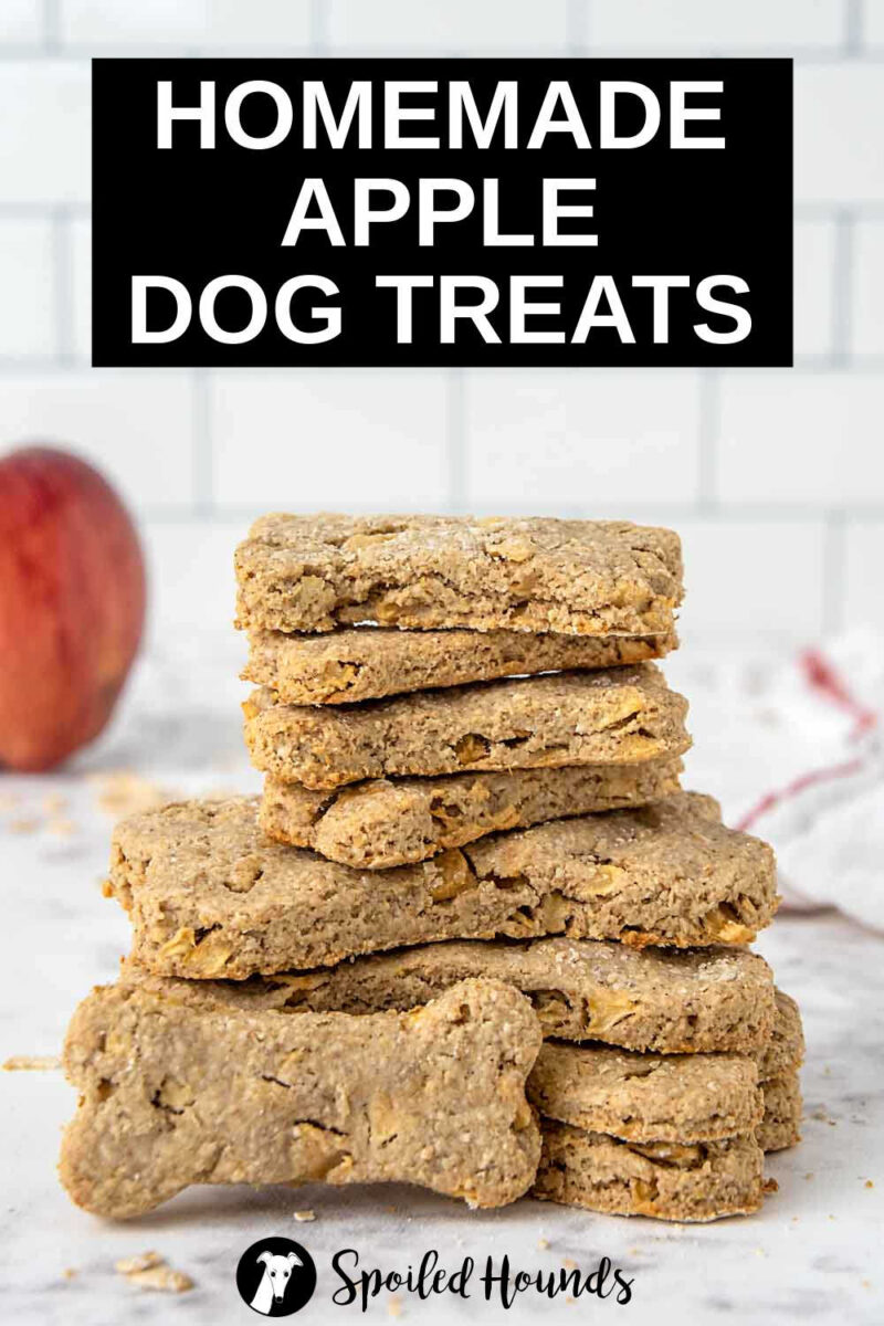 homemade apple dog treats in a stack.