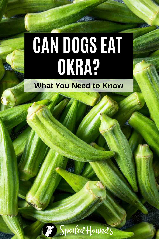 a pile of fresh okra.