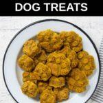 homemade peanut butter pumpkin dog treats in a bowl.