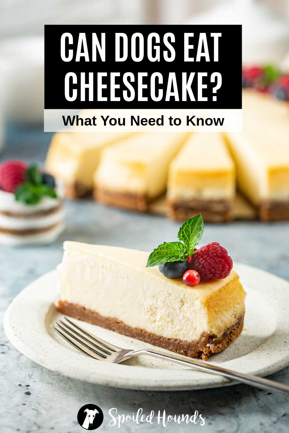a slice of cheesecake and a fork on a plate.